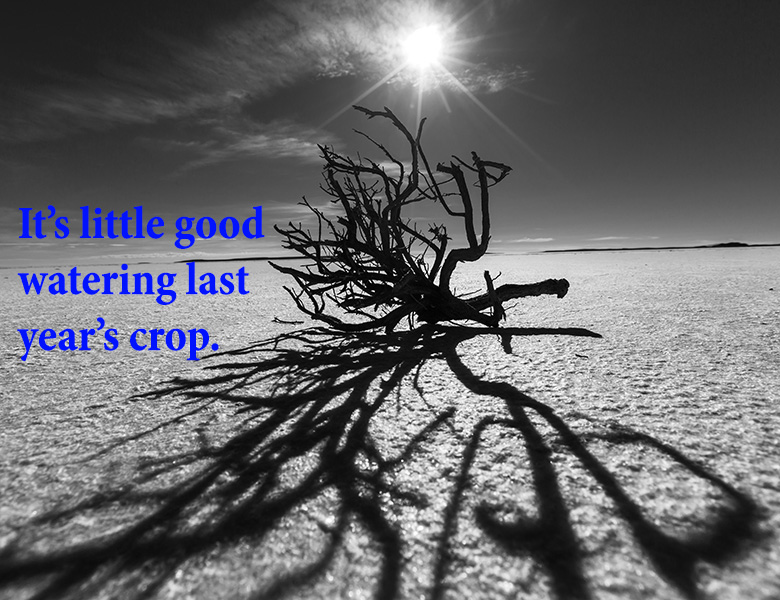 It's little good watering last years crop. - English Proverb