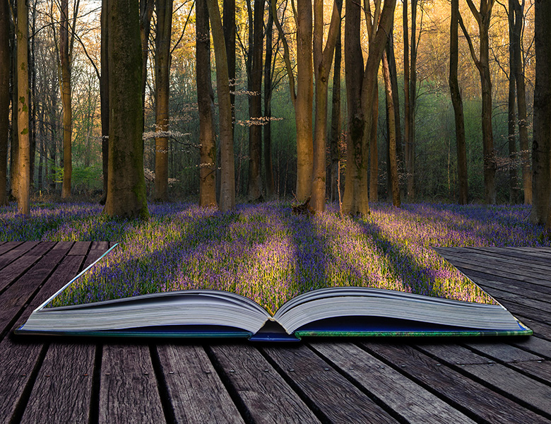 An open book leading to nature.