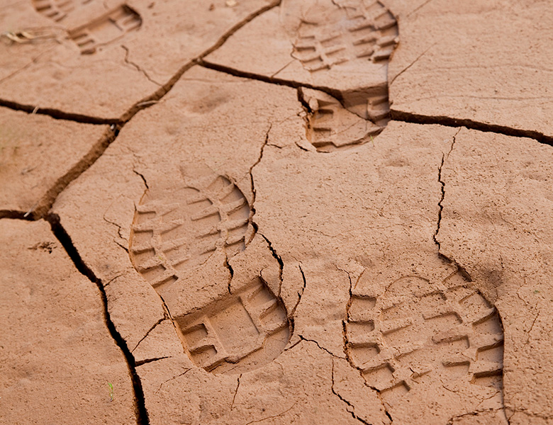 Footprints on dry ground