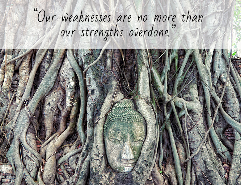Our weaknesses are no more than our strengths overdone.